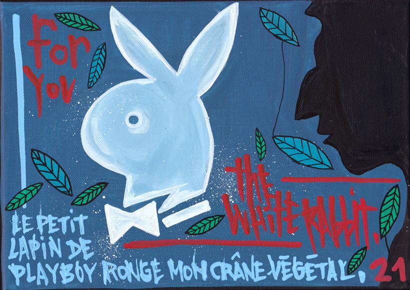 Le petit lapin de Playboy ronge mon crâne végétal - Tarek - Gainsbourg - Galerie JPHT - 0006